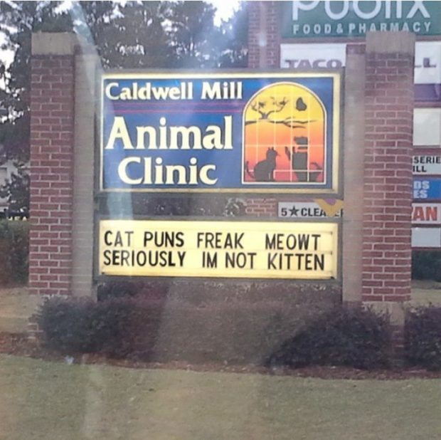 Cat puns on a sign
